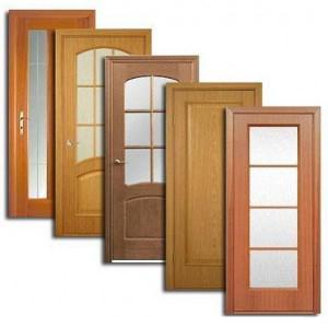 Двери, дверные блоки Камышлы