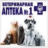 Ветеринарные аптеки в Камышле